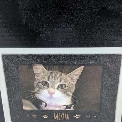 Meow Frame 4