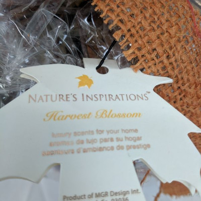 Nature's Inspiration Pumpkin - New