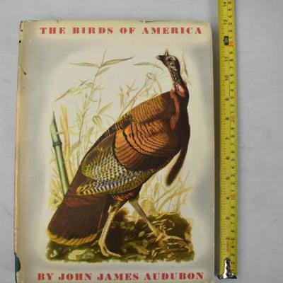 5 Hardcover Books about Birds