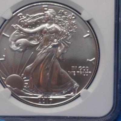 BURNISHED SILVER EAGLE 2017 W Eagle         24