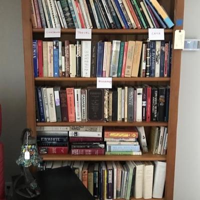 Contemporary bookshelf $195