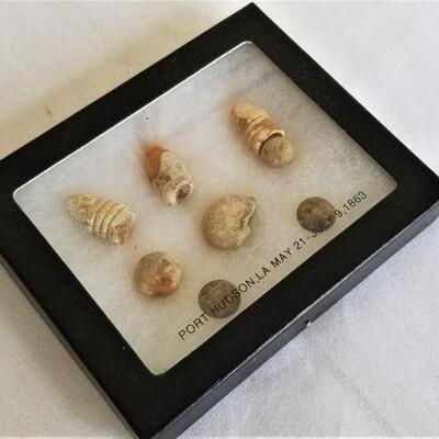 Lot #23  Dug relic collection found at Port Hudson Battlefield - Civil War