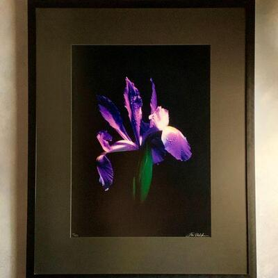 PT3#17  PHOTOGRAPHIC ART PRINT S/N JIM DELUTES IRIS