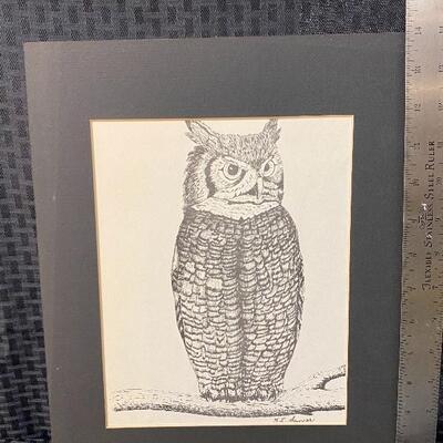 Pair of Vintage Owl Prints