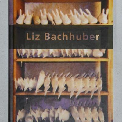 Untitled photo book by Liz Bachhuber
