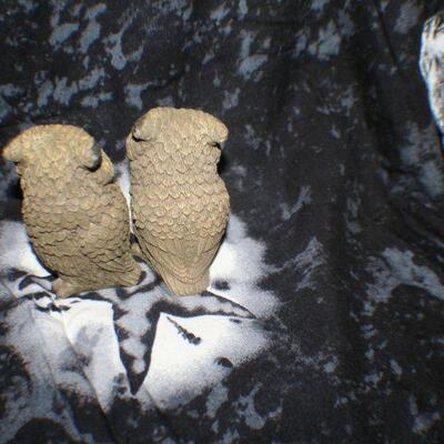 Set of 2 Brown Owls