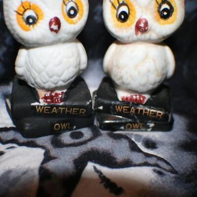Weather Owl Set of 2