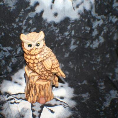 Brown Owl On Stump