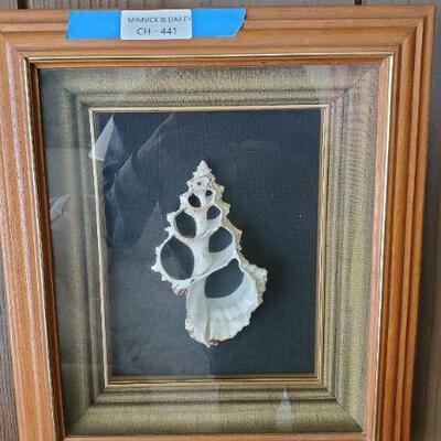 LOT 441 Sea Shell Design