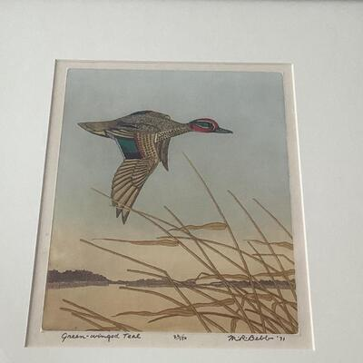 109 Original Signed and Numbered Colored Etching Green Winged Teal by Maurice Webb
