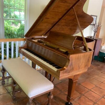 1909 STEINWAY 7' PATENT GRAND PIANO (Restored)