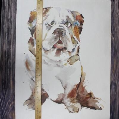 Unsigned Bulldog Watercolor Painting Unframed