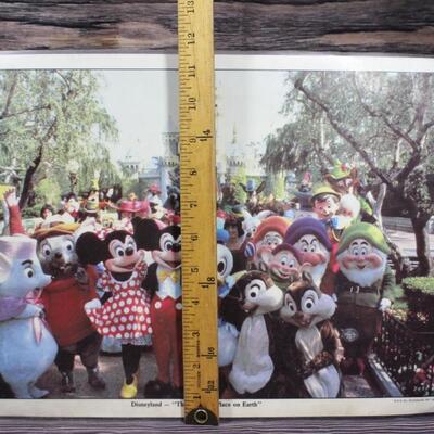 Vintage Laminated Disneyland Character Photo
