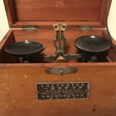 Vintage Traveler's Scales Collection