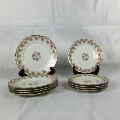 Lot #13 Set of 10 Limoges Plates