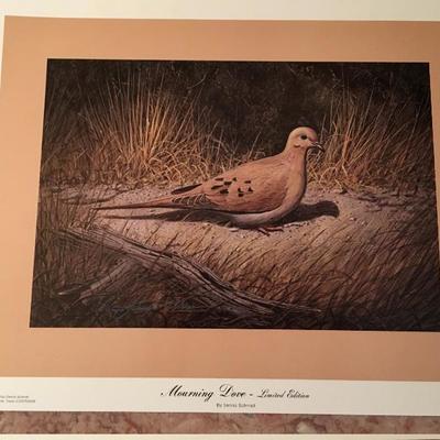 Morning Dove By Dennis Schmidt LE; Signed; # 898/1000