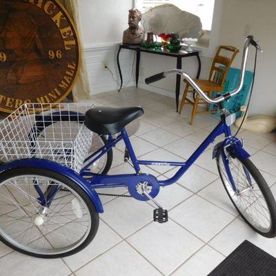 Acclaim Tricycle