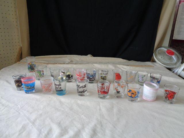21 Shot Glasses