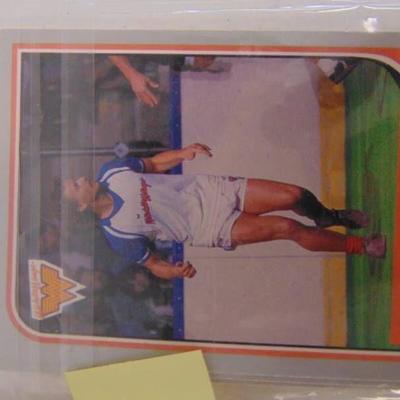 17 1987 Wichita Wings Cards
