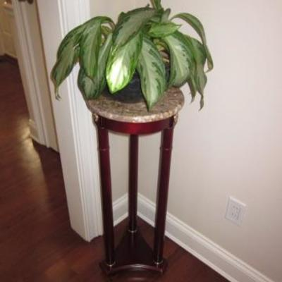 Pedestals Marble Top/Plants