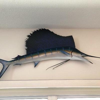 Gorgeous Mounted sailfish