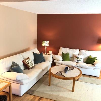 Contemporary Scandinavian design Living room