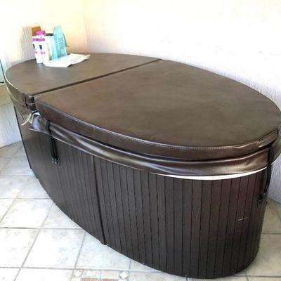 Fitness Leisure Oval Single-person Hot Tub - $875