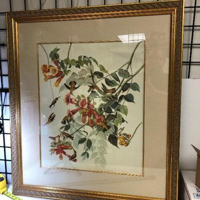 https://www.ebay.com/itm/124180868617LAN9822: XL Framed Humming Bird Print $20.00
