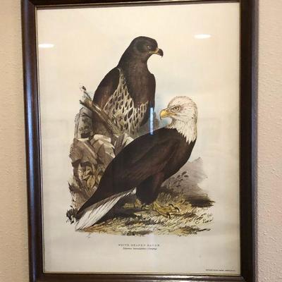 https://www.ebay.com/itm/114226833440BU1074: White Head Eagle Framed Plate Local Pickup $75