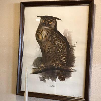https://www.ebay.com/itm/114226832154BU1073 Eagle Owl Pint Framed Plate Local Pickup $75
