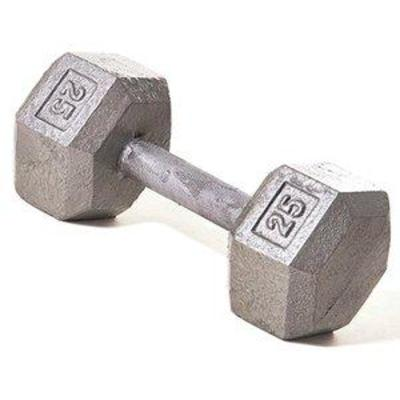 Champion Barbell 25 lb Solid Hex Dumbbell