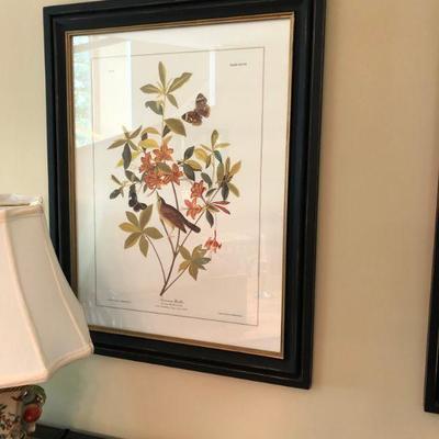 Audubon Print   $85