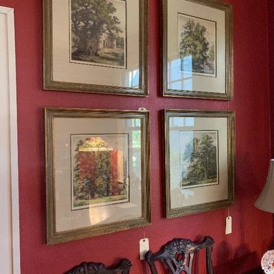 Hand-tinted botanical prints