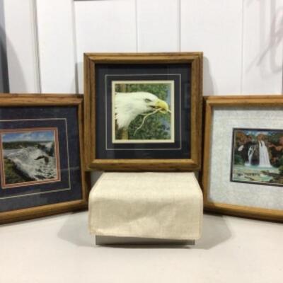 Framed eagle art trio