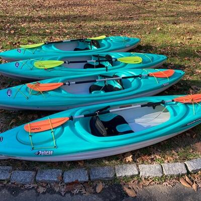 Trailblazer 100 kayaks (4 available) and chute paddles  (4 available)