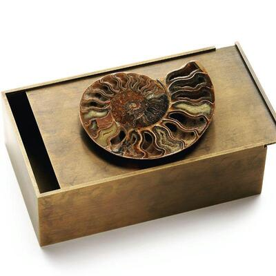 Hand forged bronze box with concealed lid, Ammonite or minerals on top 10 x 6 x 3. Perfect for hiding the remote! $550