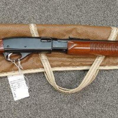 Remington 572 pump action rifle