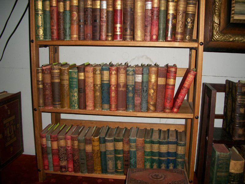 1880's Victorian bindings