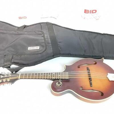 2048  The Loar Mandolin With Guitar Soft Case The Loar Mandolin With Guitar Soft Case