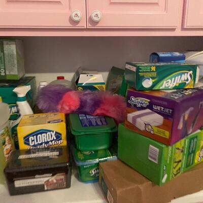 Lots of new cleaning supplies