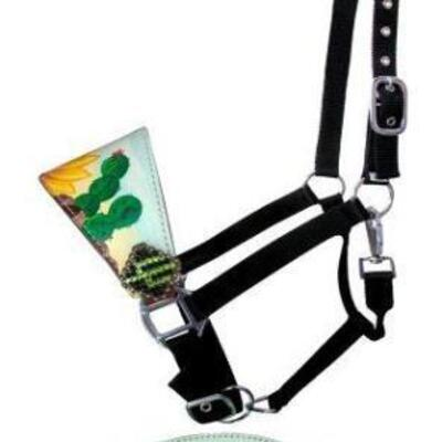82  Showman ® Adjustable nylon bronc halter with hand painted sunflower and cactus nose band. This halter features a leather bronc style...